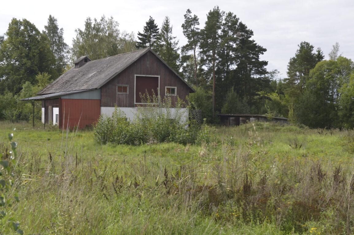 Grönt markområde med äldre ladubyggnad och förråd.